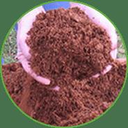 nutrition-compost